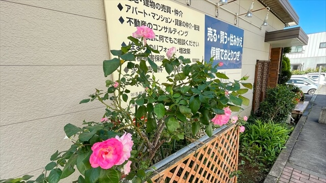 季節になるとバラの花が咲き乱れ綺麗です。通りがかりの人に「いつも楽しませてもらています。」とお声がけいただきます。